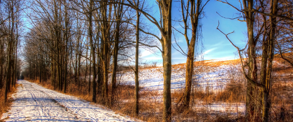 TRY THE TRAIL IN WINTER