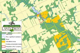 Help Protect Norfolk County Wetlands